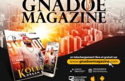 Pourquoi nous devons absolument lire gnadoe magazine ?