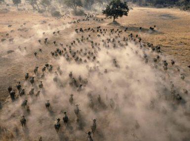 Le Tchad, première «source» de poussière au monde