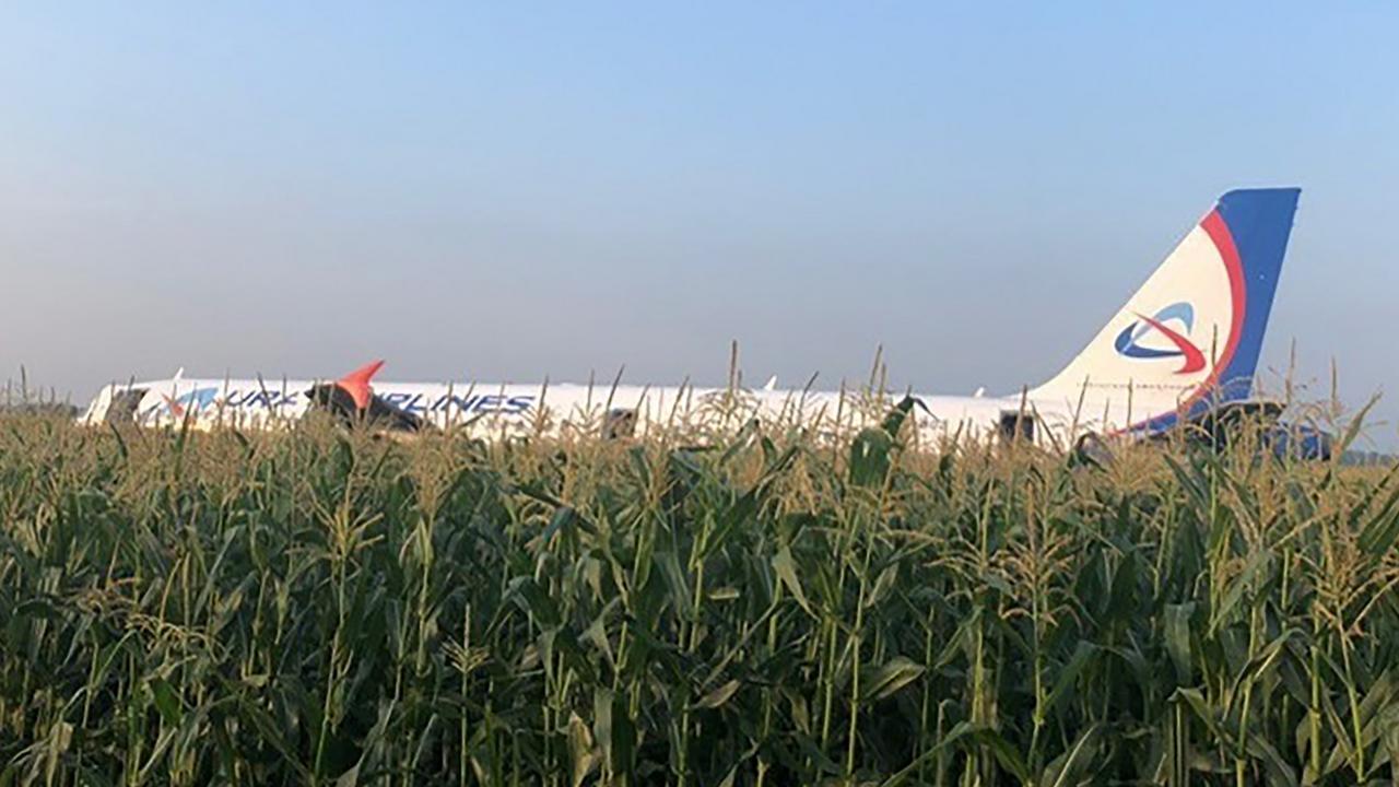 Un avion se pose en catastrophe dans un champ de maïs (vidéo)