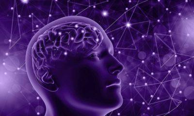 Faire souvent la sieste, un symptôme avant-coureur d'Alzheimer ?
