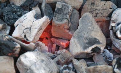 bienfaits du charbon