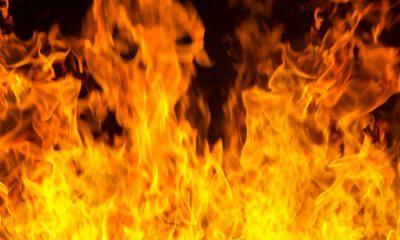 Nigeria : 2 enfants brûlés vifs pour avoir volé de la nourriture