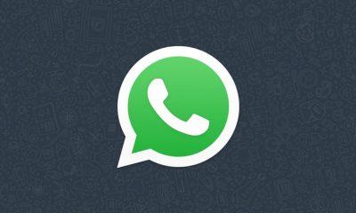 Données WhatsApp